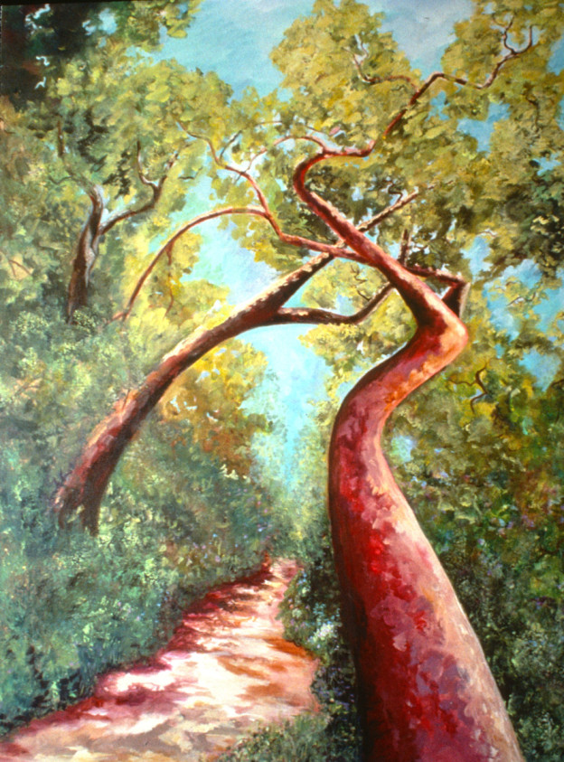 """Creative Path """"Alone in the Woods"""""""